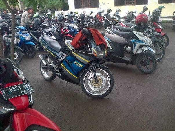 Yamaha tzm for Yamaha 150 2 stroke