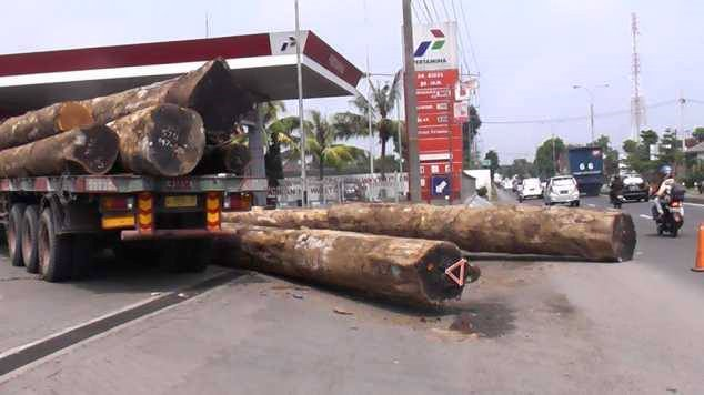 truk trailer bawa kayu log