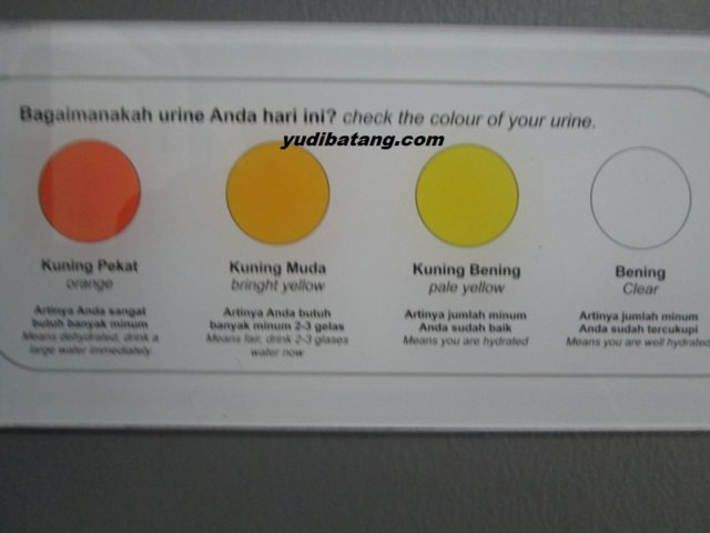 warna air seni urine