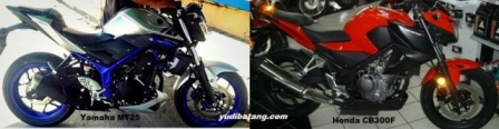 yamaha MT25 vs Honda CB300F 3