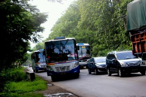 bus sumber kencono balapan